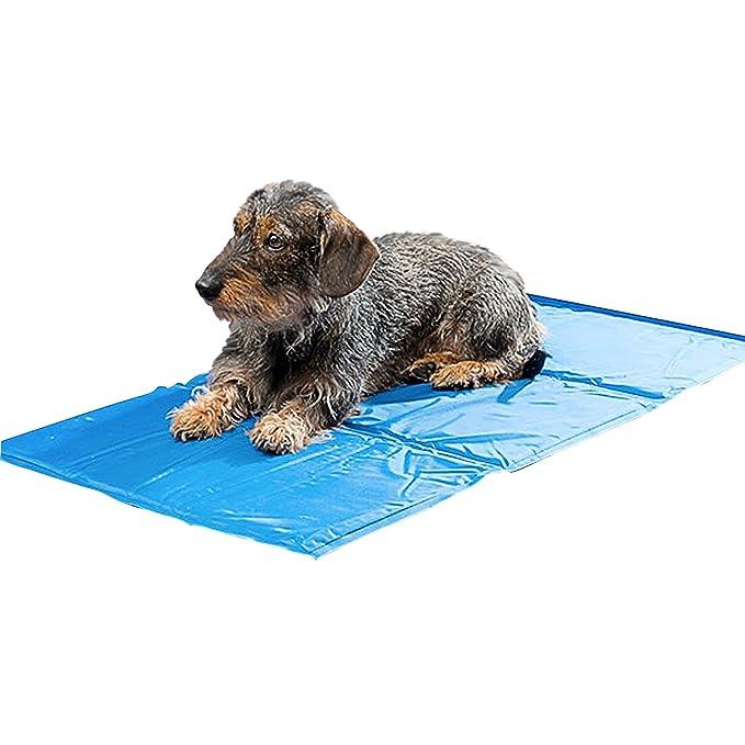 Oramics Premium Haustier Kühlmatte - 90 x 50 cm - für die Perfekte Abkühlung Ihrer Liebsten, Kühlmatte für Hund und Katze, Kü