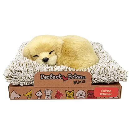 Amazoncom Perfect Petzzz Mini Baby Golden Retriever Puppy Dog