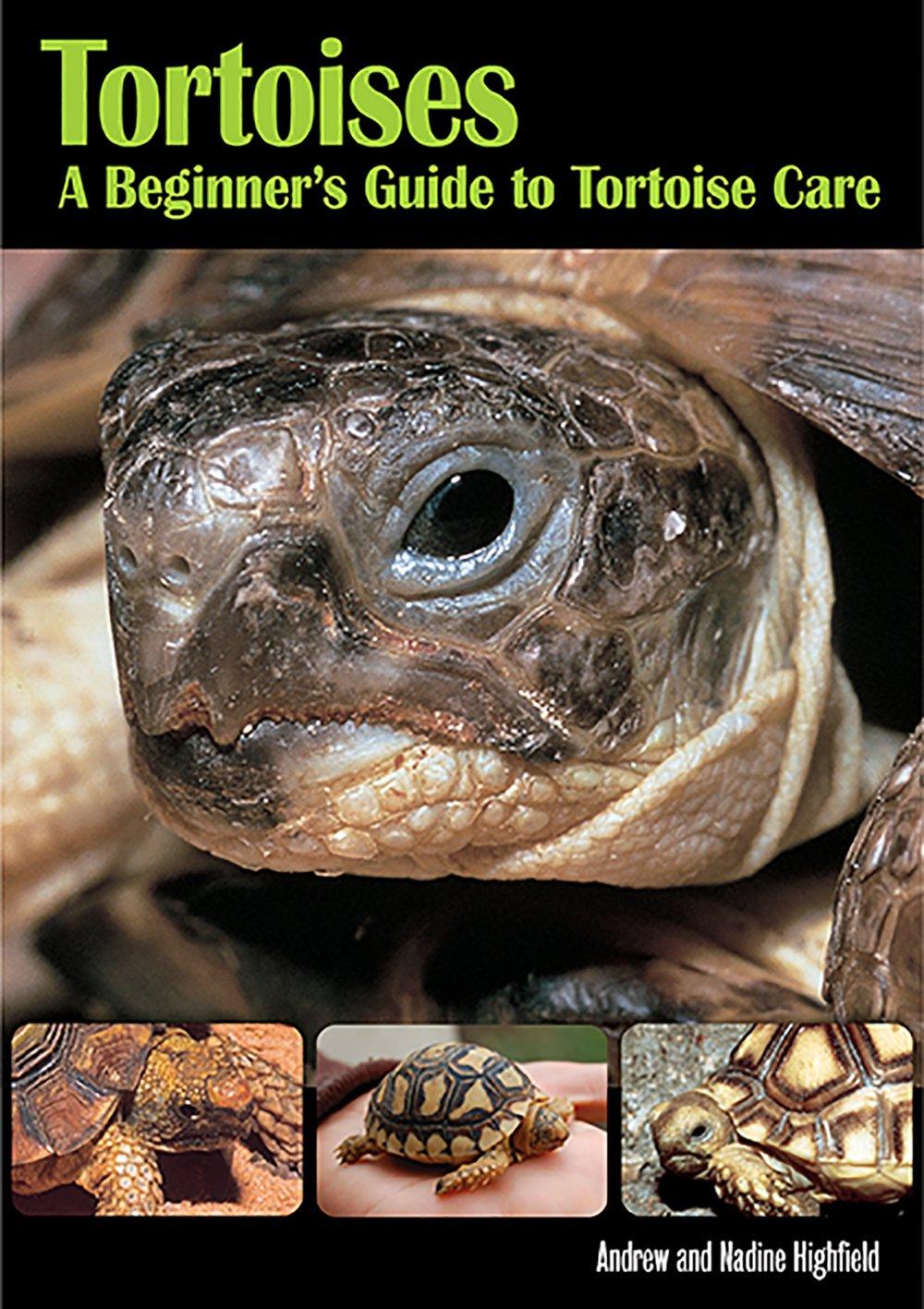Tortoises Andrew Highfield product image