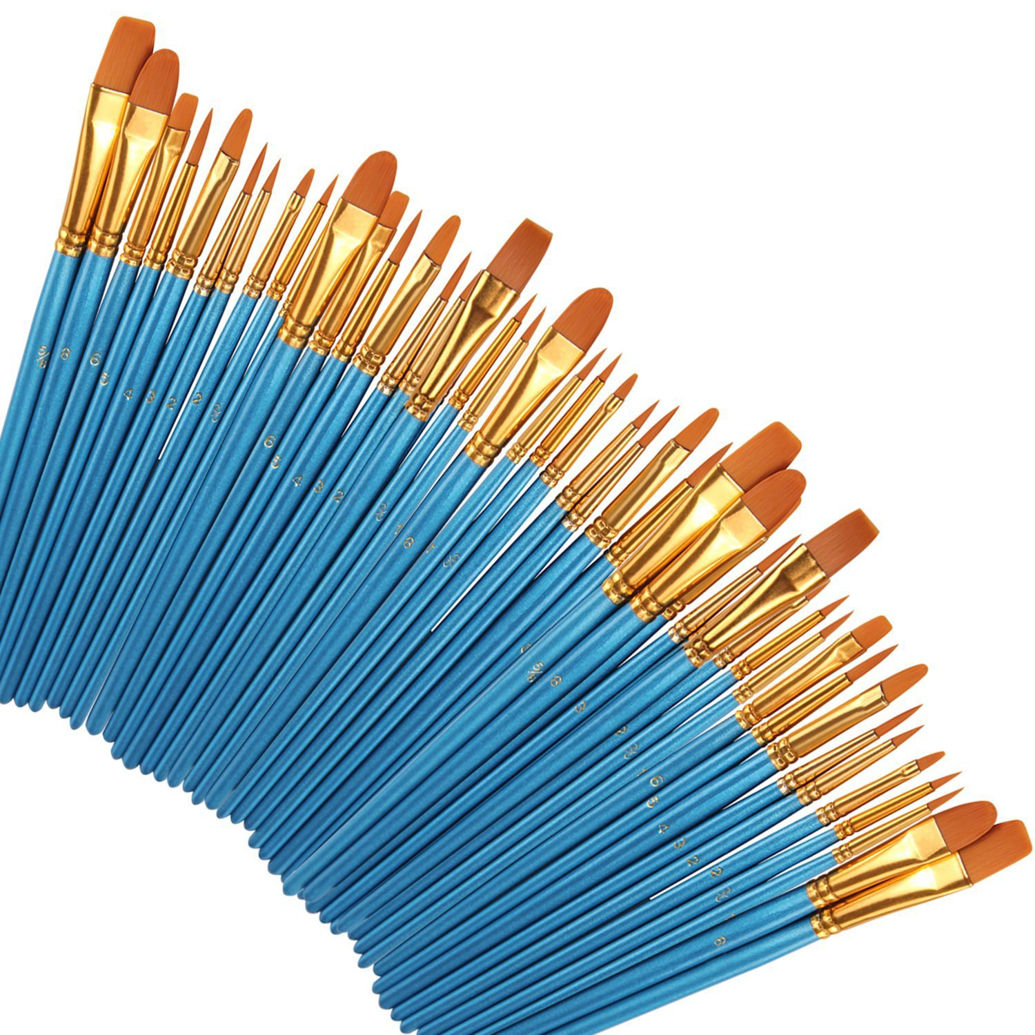 Paint Brushes 50 Pcs, heartybay Nylon Hair Brushes Set Acrylic Blue Round Pointed Paints Brush for Watercolor Oil Painting