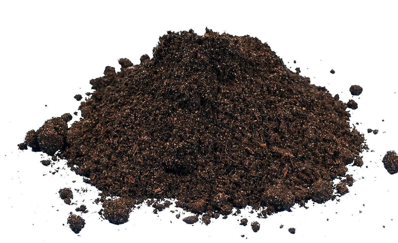 Compost gusanos - 1000 unidades/Cubo de compostaje Starter - lumbricidae - eisenia Compost Gusano Moorland activo - Gusanos para jardín & Compostaje.