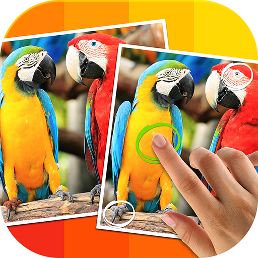 Tap 5 Differences ()