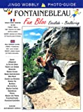 Fontainebleau Fun Bloc (Jingo Wobbly Photo-guide)