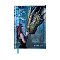 Anne Stokes: Once Upon a Time Pocket Diary 2019 (Diary A6)