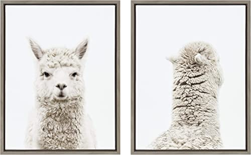 Kate and Laurel Sylvie Alpaca Front and Back Framed Canvas Wall Art