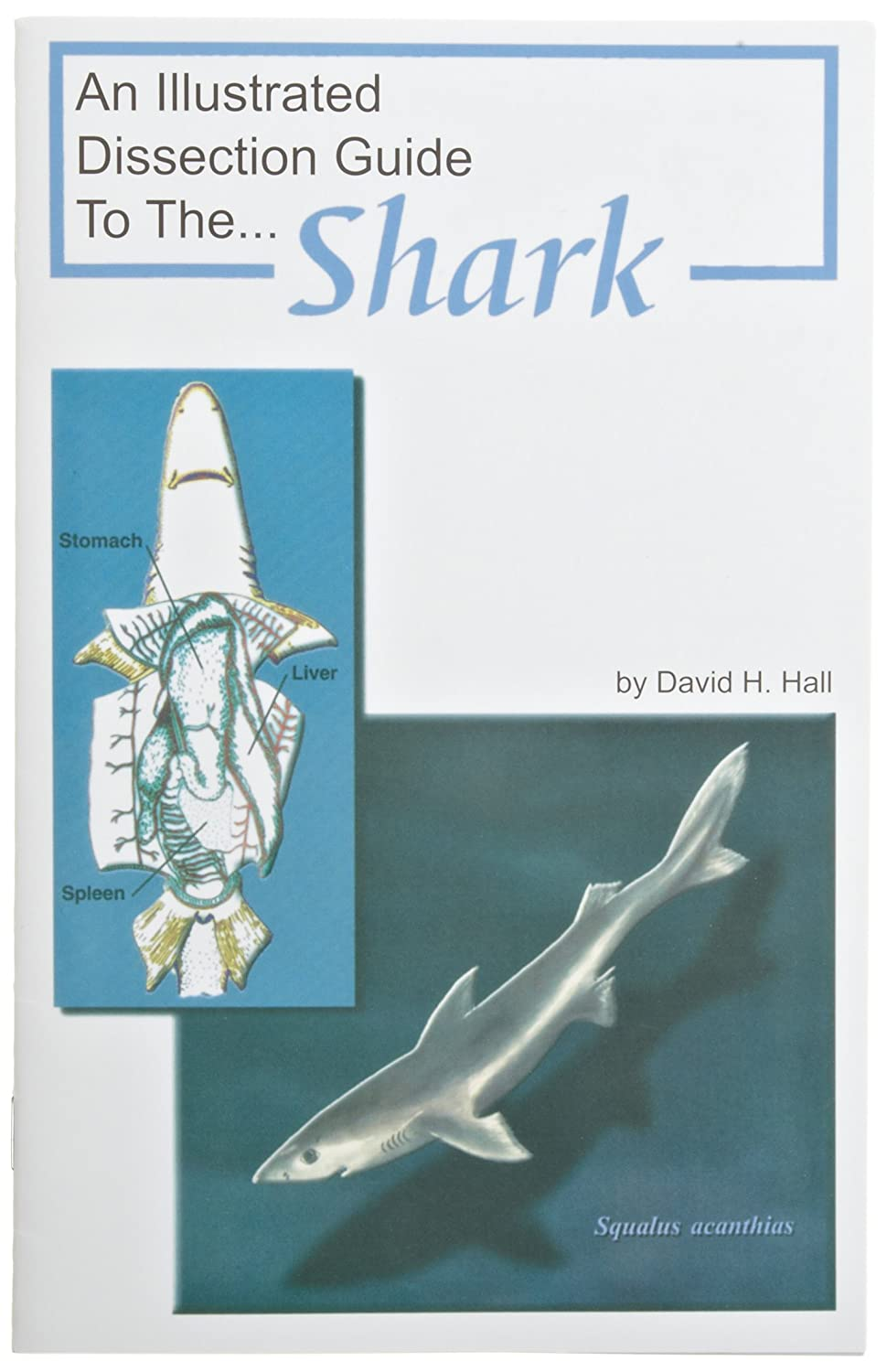 Frey Scientific 597177 Mini-Guide to Shark Dissection