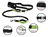 Retractable Hands Free Dog Leash with Dual
