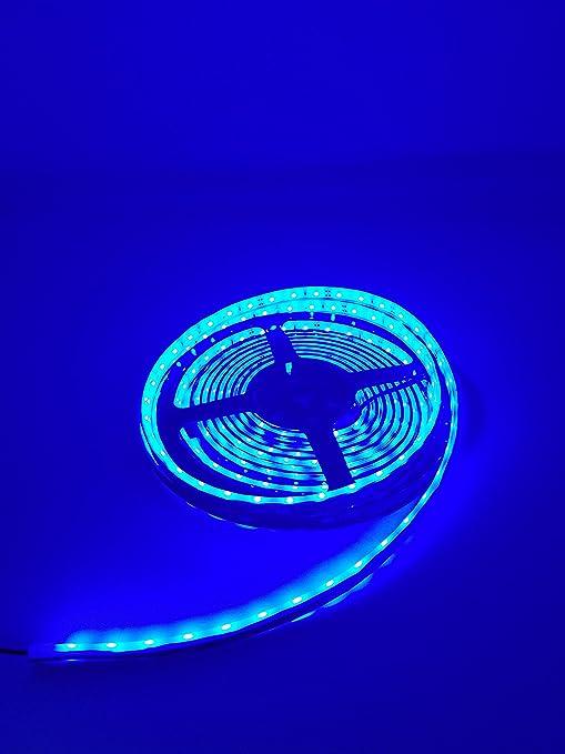 Amazon marine submersible led light strip 12v 16ft blue led marine submersible led light strip 12v 16ft blue led rope lights waterproof led lights aloadofball Choice Image