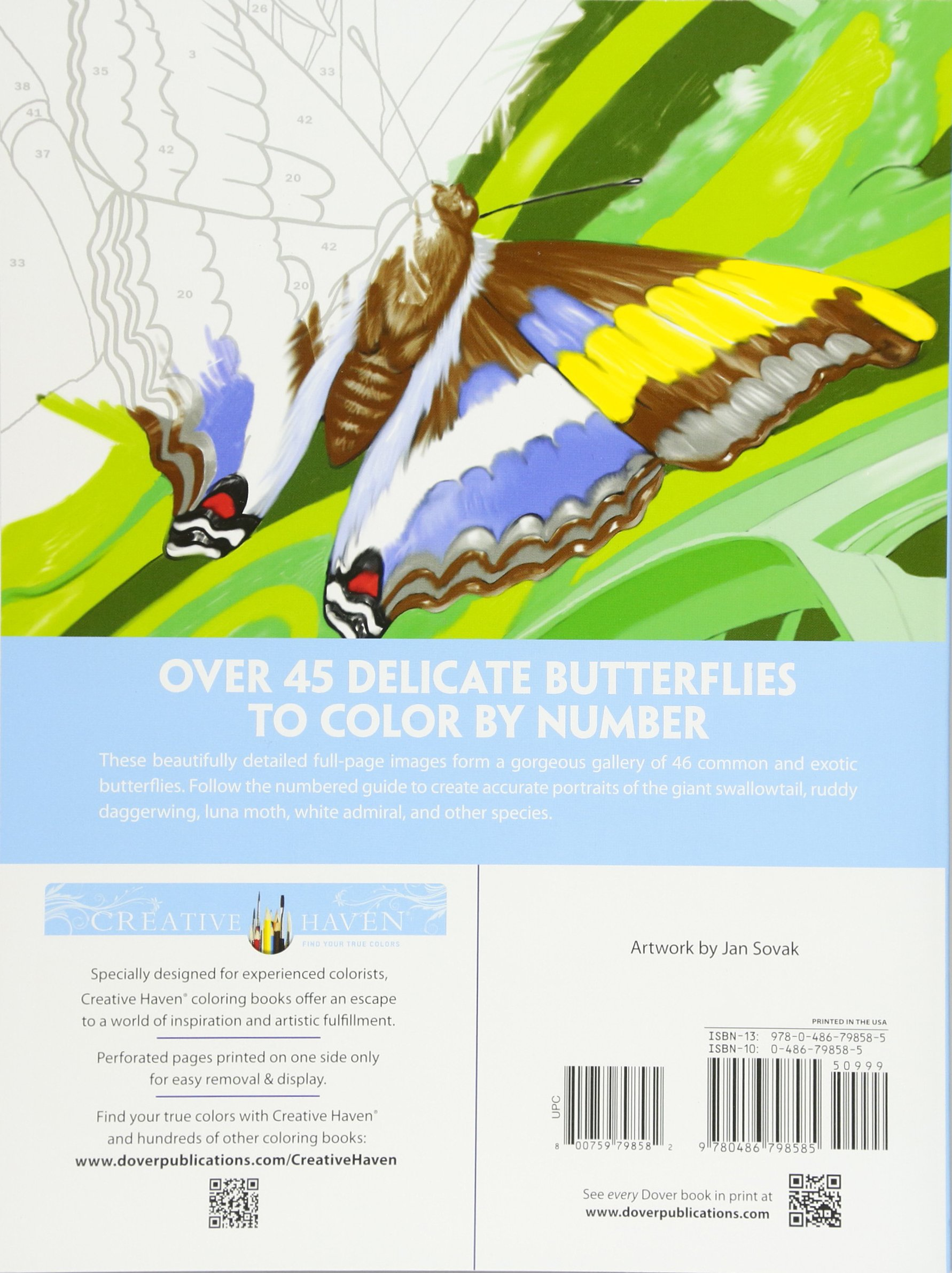 amazon com creative haven butterflies color by number coloring