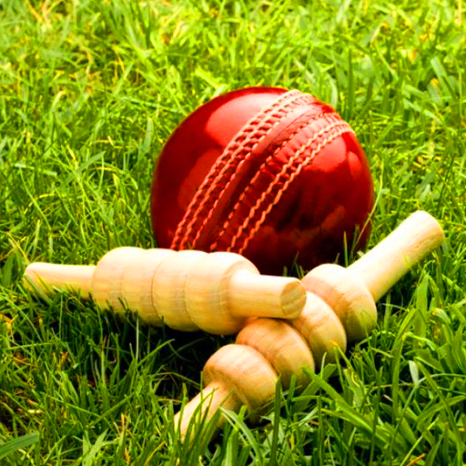 Amazon Com Cricket World Champion Appstore For Android