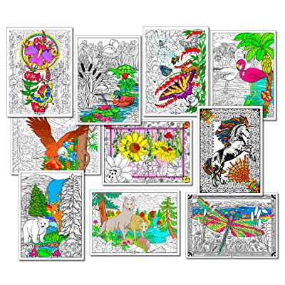 Stuff2Color Nature Themed Line Art Bundle - 10 Poster Pack: Toys & Games