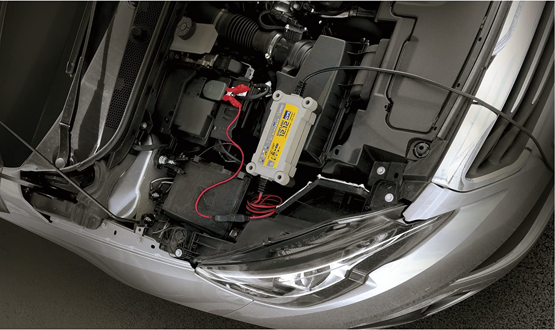 Gys 230V Inverter Chargeur//Maintien de Charge GYSFLASH 12.12 Livr/é avec Pinces de Connexion