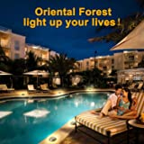 Oriental Forest Deck Lights Solar Powered Dock