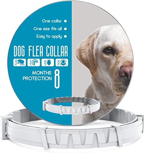Dog-Collar-8-Months-Protection