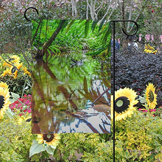 LAZEN Poliéster Natural jardín Bandera Dos Caras Boda Patio Granja césped decoración 12x18 Pulgadas: Amazon.es: Jardín