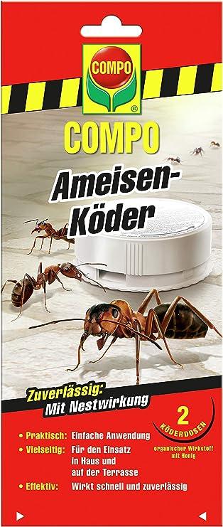 Compo 1646402 - Control de Hormigas en Interiores: Amazon.es: Jardín