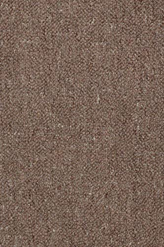 Home Queen Color World Collection Pet Friendly Indoor Outdoor Brown Color Area Rug – 4 x6