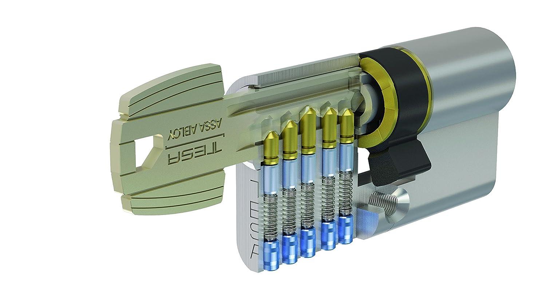 Tesa Assa Abloy, 50303030N, Cilindro de seguridad TE5, Leva larga, 30x30mm, Niquelado: Amazon.es: Bricolaje y herramientas
