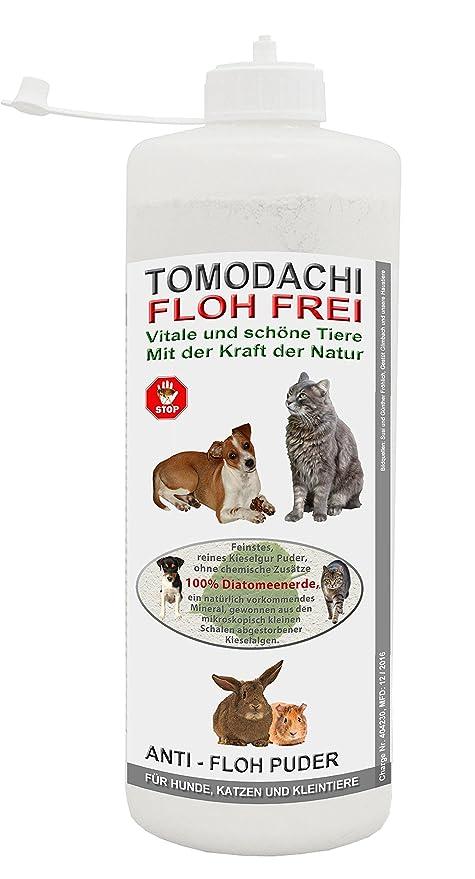 Antifloh Puder Kieselgur Gegen Hundeflöhe Flohmittel Für Hunde