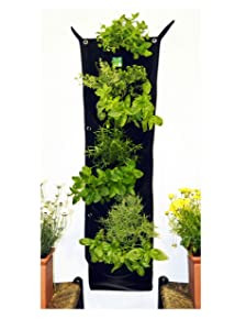 Delectable Garden 7 Pocket Waterproof Indoor Hanging Vertical Garden Wall Planter for Home Decoration