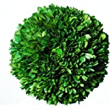 Galt International Naturally Preserved Real Boxwood Decorative Ball, 8-Inch