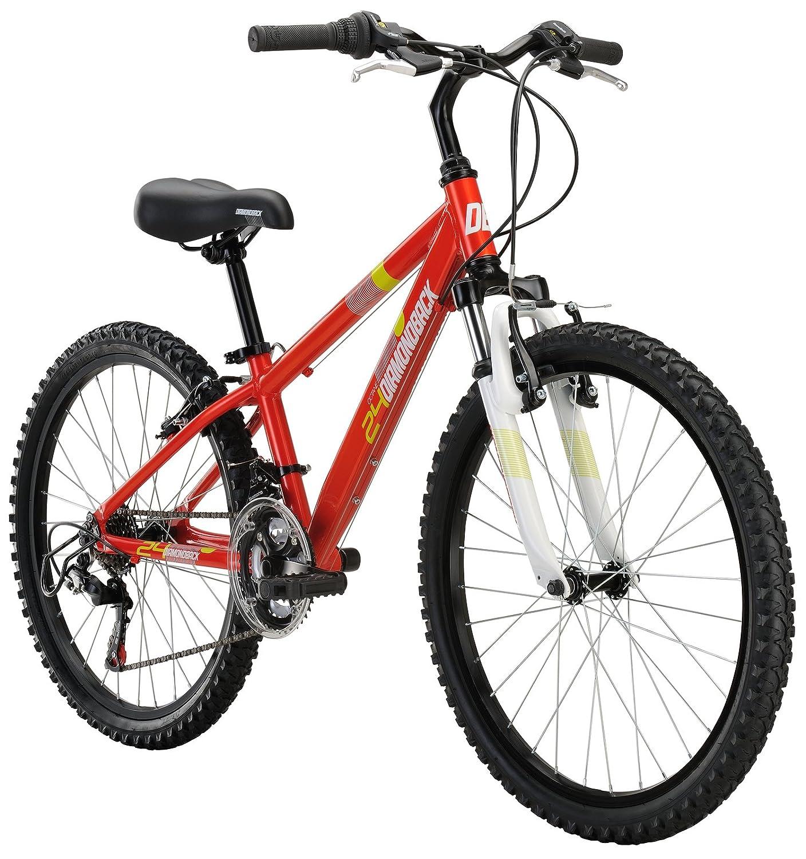Raleigh Bikes Kids Rowdy 24 Mountain Bike 24 One
