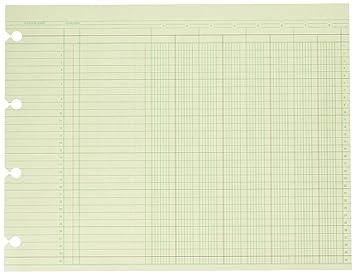 Amazon.com : Wilson Jones Green Columnar Ruled Ledger Paper, 8 ...