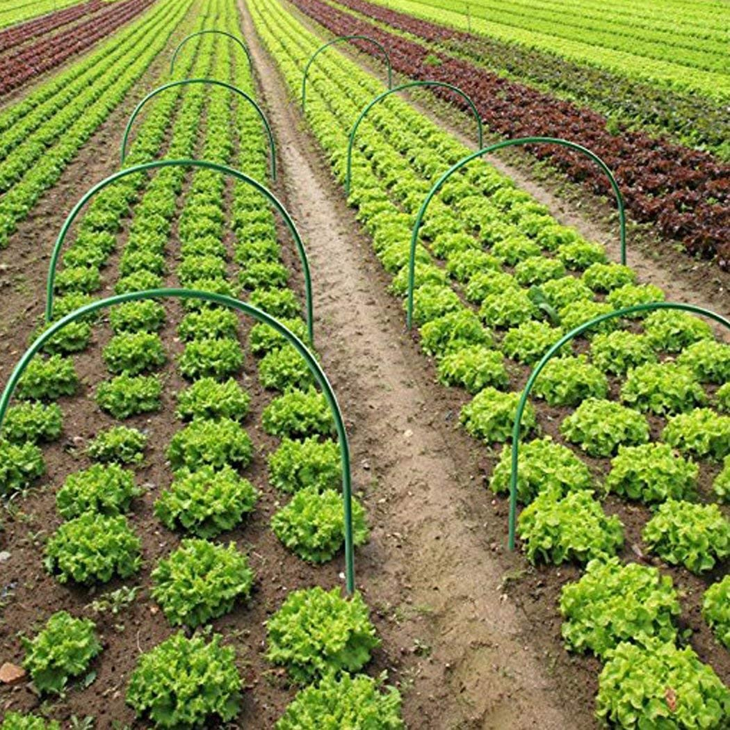 F.O.T 6 estacas de apoyo para plantas de jardín, aros de ...