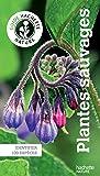 Le guide Hachette Nature des Plantes Sauvages