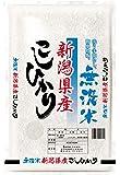 【精米】新潟県産 無洗米 コシヒカリ 5kg 平成29年産