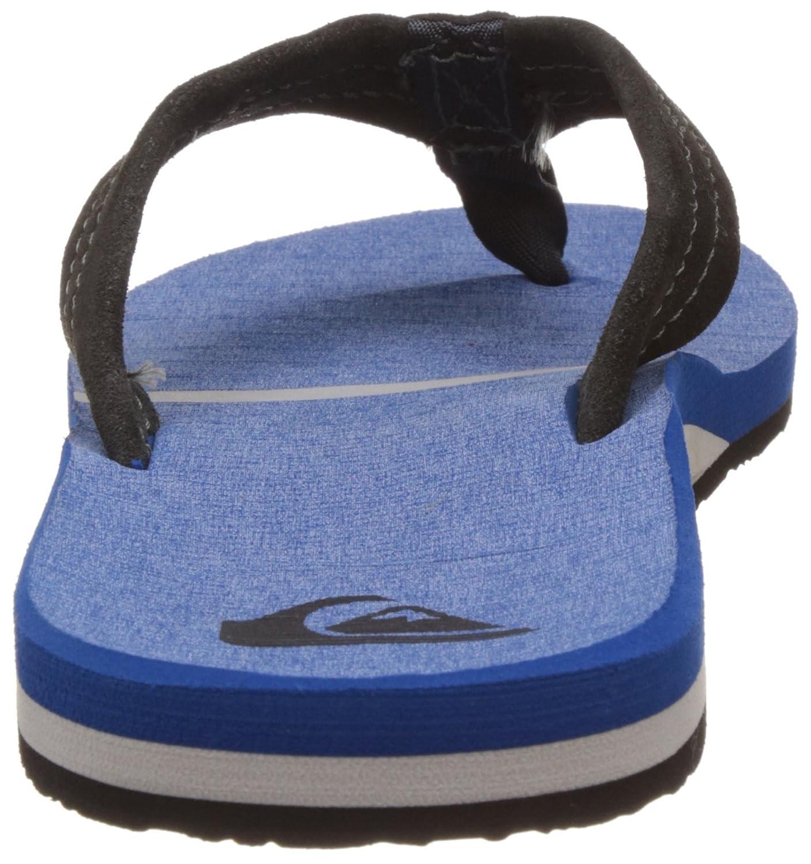 Quiksilver Herren Carver Suede Art Sandals, Sandali a Punta Aperta Uomo, Blu (Grey/blu/blu Xsbb), 41 EU