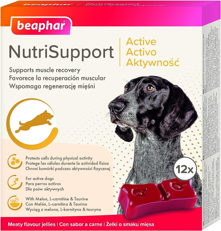 Beaphar Suplemento nutricional Natural NUTRISUPPORT Perro ...