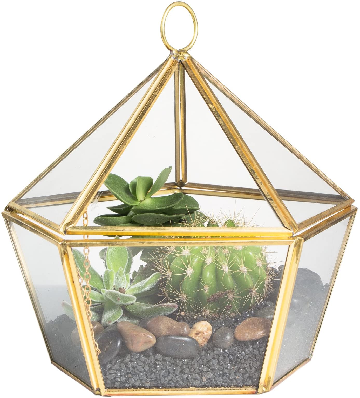 NCYP Modern Brass Copper Clear Glass Jewel-Boxed Pentagon Shape Geometric Terrarium Succulent Planter Pot Closed Plant Moss Fern Geo Container Wedding Decor Box with Swing Lid Gold