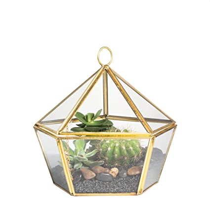 Modern Artistic Brass Copper Clear Glass Jewel-boxed Pentagon Shape Glass Geometric Terrarium Plant Succulent Planter Box Moss Fern Decor Container with Swing Lid Gold