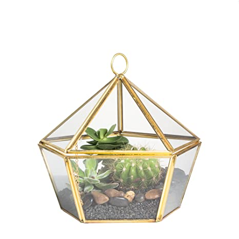 Amazon Com Ncyp Modern Brass Copper Clear Glass Jewel Boxed