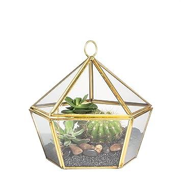 Artístico Moderno Latón Cobre Cristal Transparente jewel-boxed Pentágono Forma terrario macetero caja para musgo