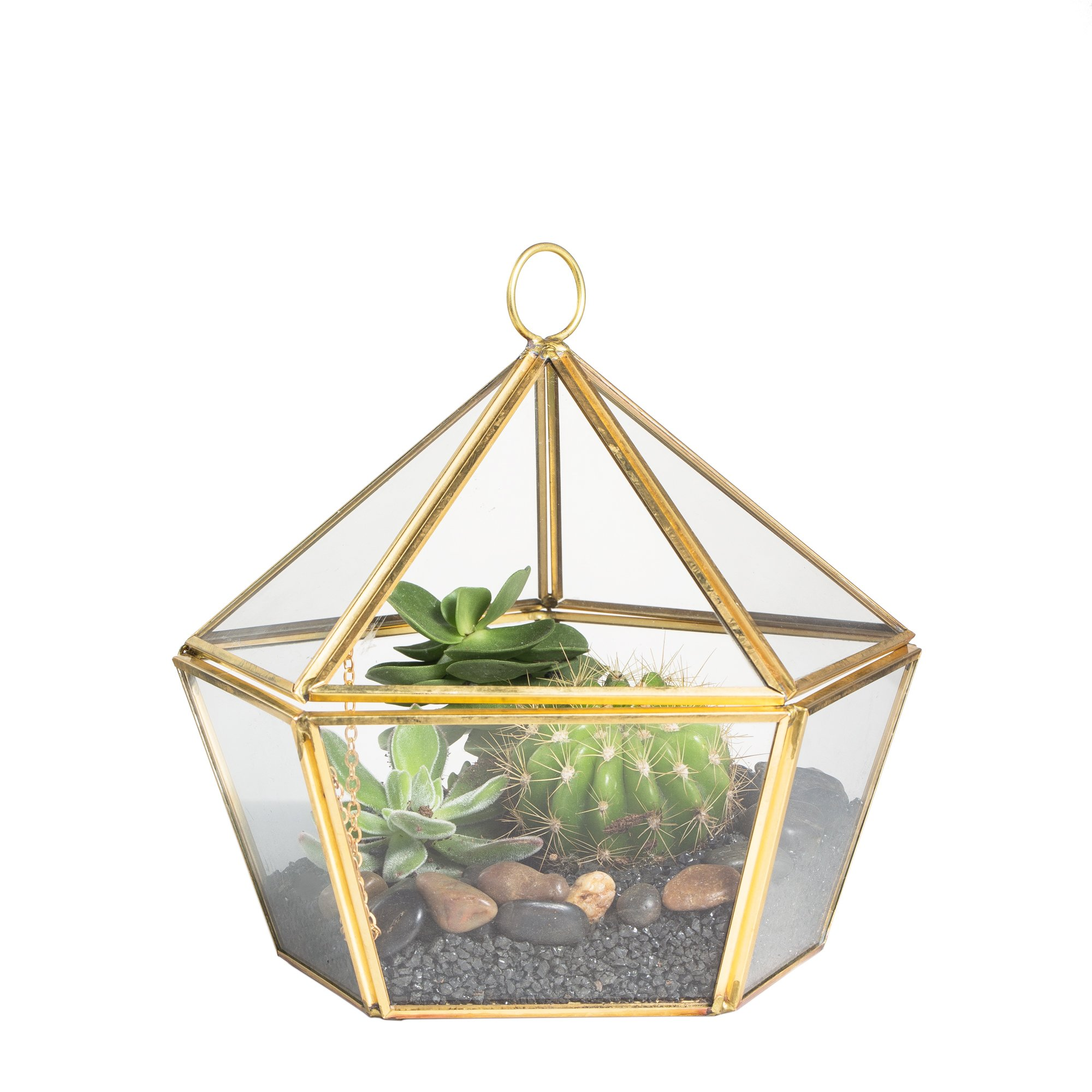 NCYP Modern Artistic Brass Copper Clear Glass Jewel-boxed Pentagon Shape Glass Geometric Terrarium Succulent Planter Closed Plant Container Moss Fern Geo Box with Swing Lid Gold