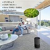 JETERY Air Purifier True HEPA Filter, Air Cleaner