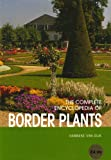 Border Plants (Complete Encyclopedia)