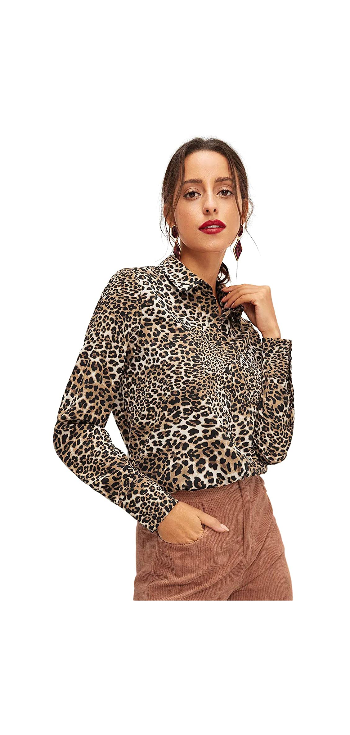 Women's Chiffon Sexy Leopard V Neck Long Sleeve Tops