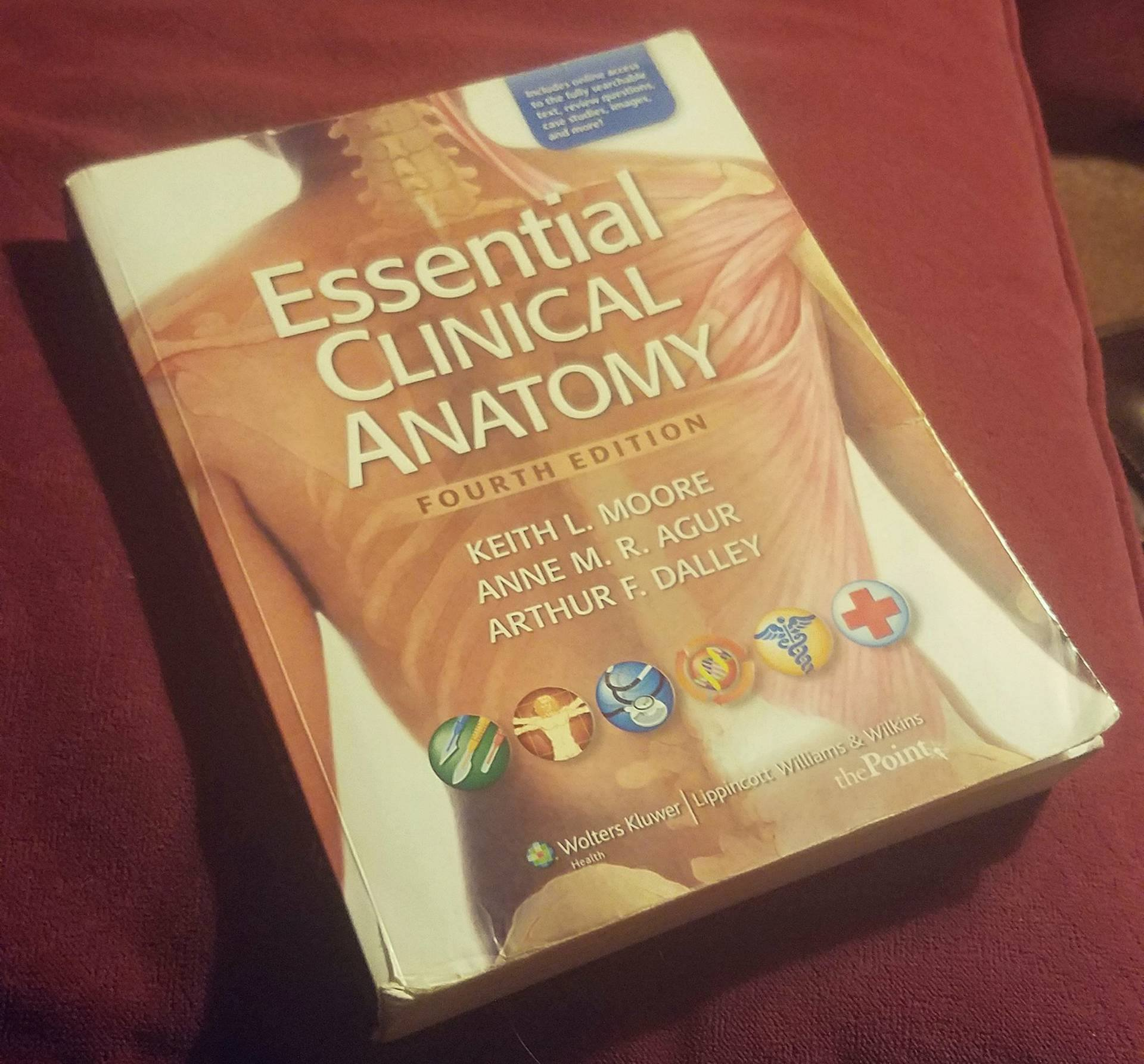 Essential Clinical Anatomy, International Edition by Keith L. Moore ...