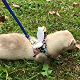 Ferret Harness and Leash Adjustable, Sakura Cotton Cloth Ferret Walking Vest, Soft and Breathable Ferret Lead Leash with…