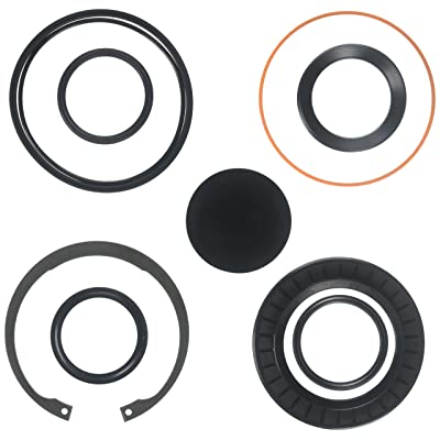 R. H. Sheppard 5545481 Sector Shaft Seal Kit with Snap Ring/L-Seal: Automotive
