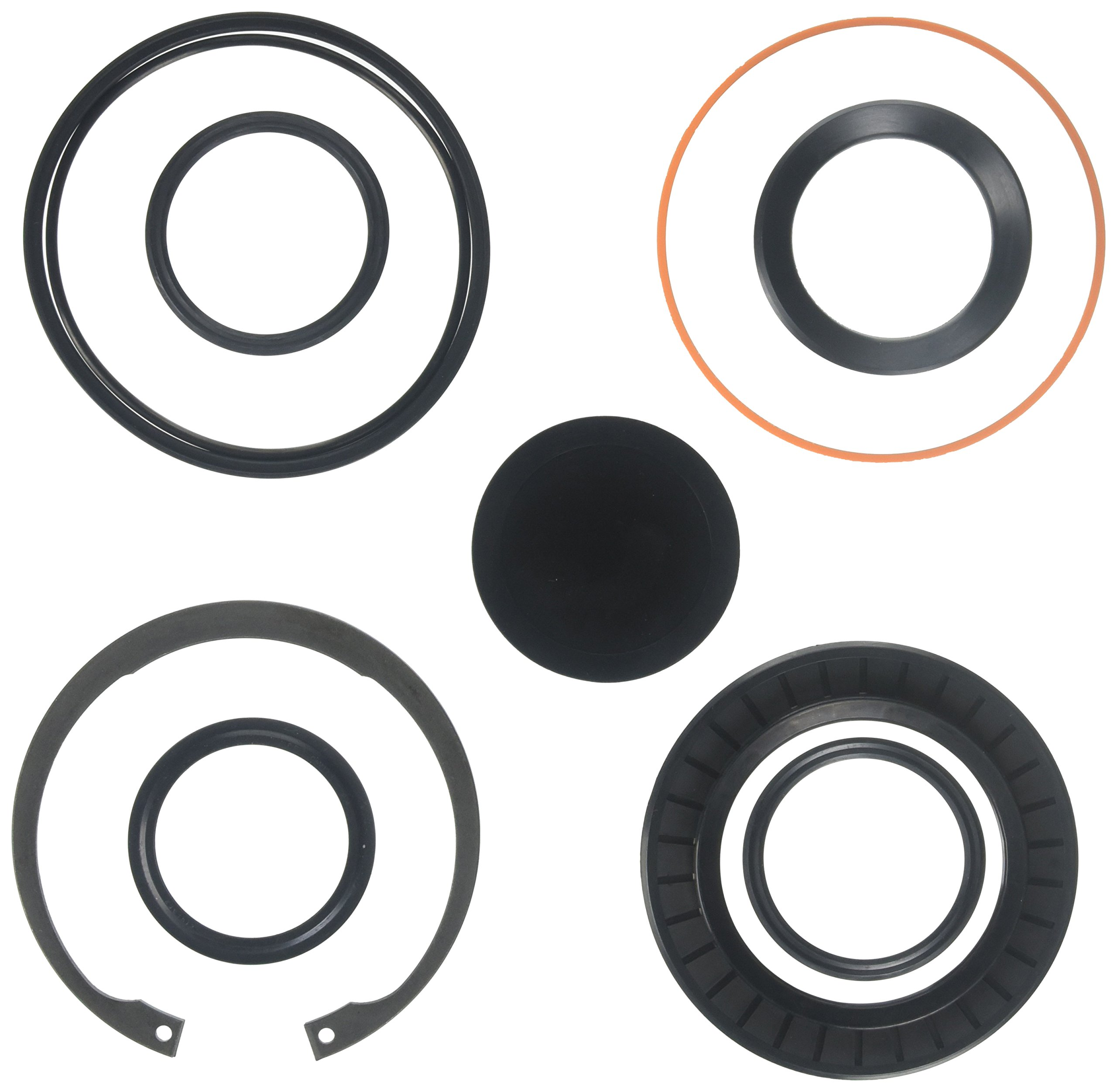 R. H. Sheppard 5545481 Sector Shaft Kit with Snap Ring/L-Seal