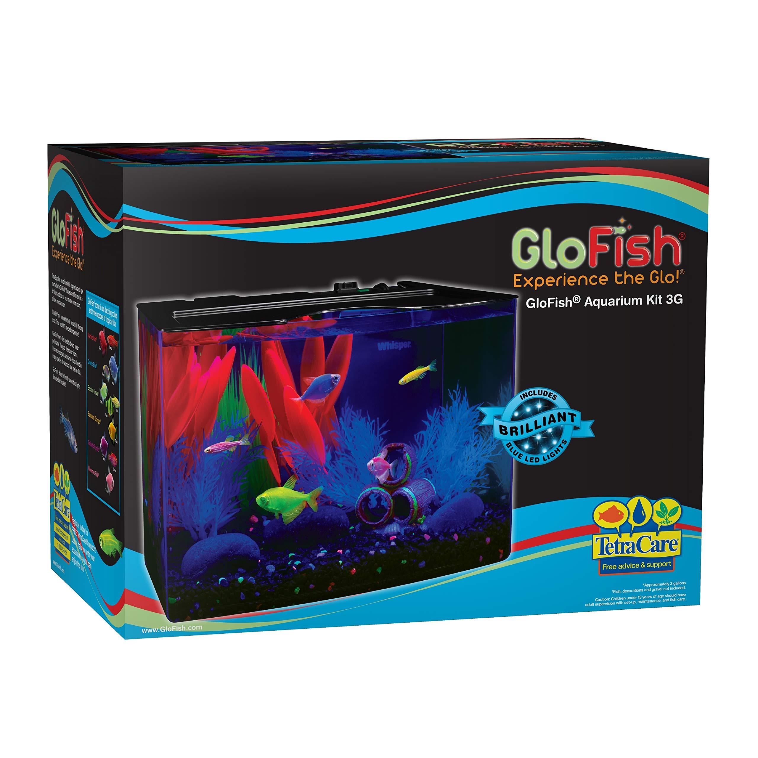 GloFish 3 Gallon Aquarium Kit w/ Cover, Frame, LEDs, Power & Filter by GloFish