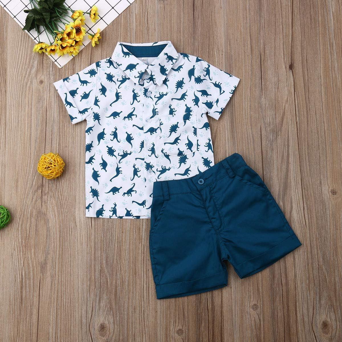 Toddler Kid Baby Boy Clothes Outfits Sets Beach Flamingo Shirt Tops Shorts Pants Set.