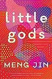 Little Gods: A Novel