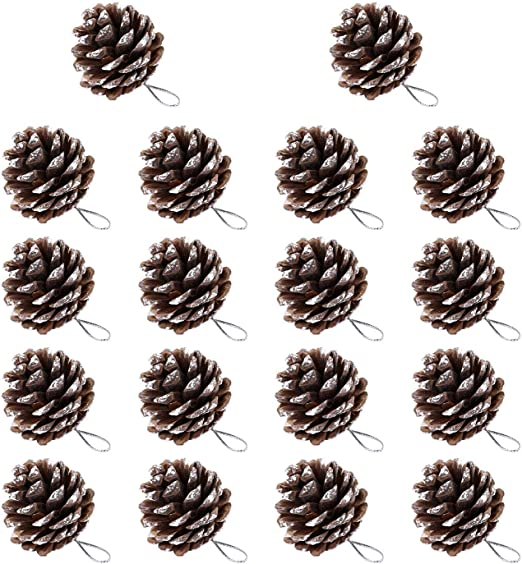 60x Mixed Natural Large Pine Cones in Bulk for Festivals Decoration Ornament