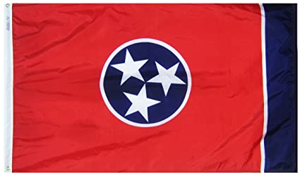 Amazon.com: Annin Tennessee Estado Bandera, Multicolor ...
