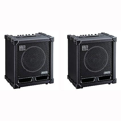 Amazon com: Roland CB-60XL Cube 60XL 60 Watt 1 Channel Deep Bass